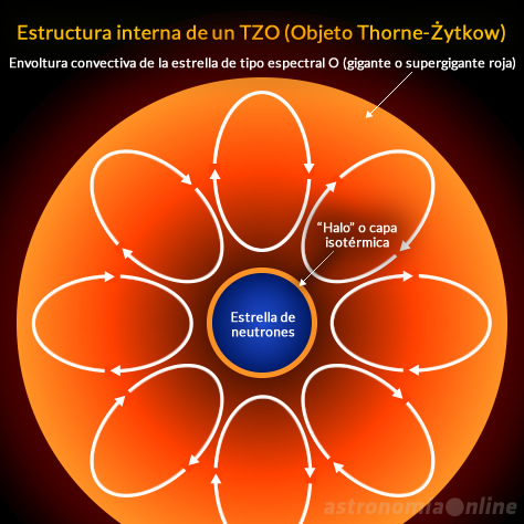 Diagrama de la estructura interna de un objeto Thorne-Żytkow. Créditos de la imagen del encabezado: Digital Sky Survey/Center de Données astronomiques de Strasbourg/Astronomía Online.