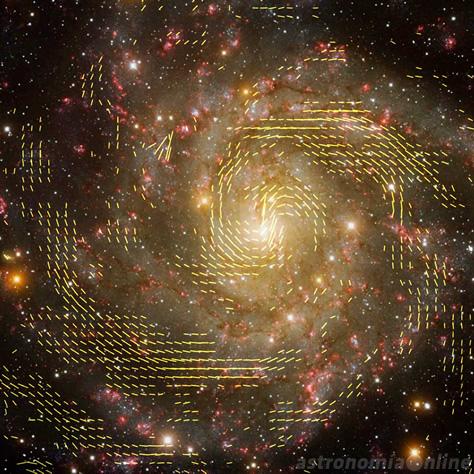 Mosaico que combina una imagen óptica de la galaxia IC 342 con las observaciones realizadas mediante los radiotelescopios Effelsberg y VLA. Las líneas negras muestran la orientación de las líneas del campo magnético. Créditos de la imagen de radio: R. Beck, MPIfR - NRAO/AUI/NSF. Imagen de fondo: T.A. Rector, University of Alaska Anchorage - H. Schweiker, WIYN - NOAO/AURA/NSF.